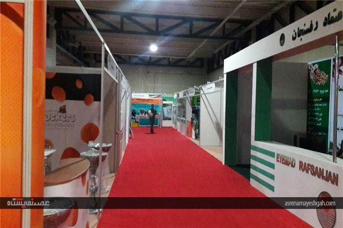 گزارش تصویری 12 ساعت تا افتتاح چهارمین نمایشگاه بینالمللی خشکبار،آجیل، میوههای خشک و صنایع وابسته