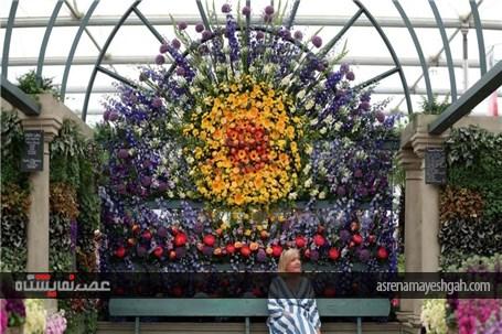 گزارش تصویری نمایشگاه گل چلسی