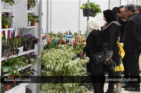 نمایشگاه توانمندی بانوان در منطقه آزاد ماکو گشایش یافت