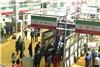 گزارش تصویری شرکت ایران در نمایشگاه بین المللی فرش شینینگ چین